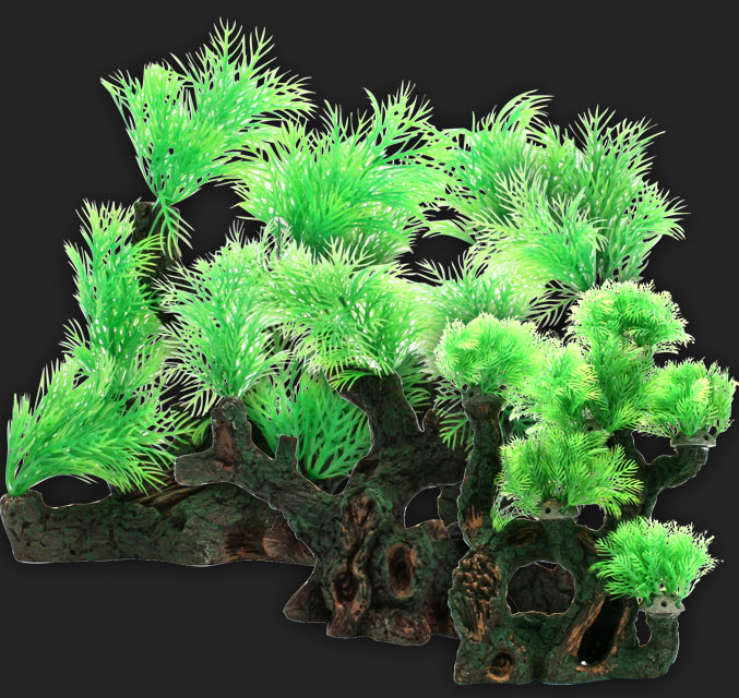 Design Elements Myriophyllum on Root Wood